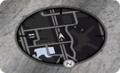 Minimap rotund